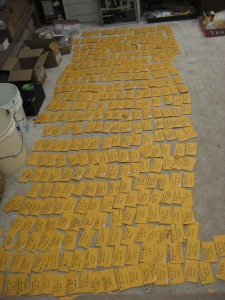 Tomato seed saving 10-17-2011 B