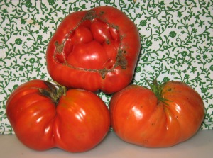 Big Tomatoes 11-11-2014 no seeds rev