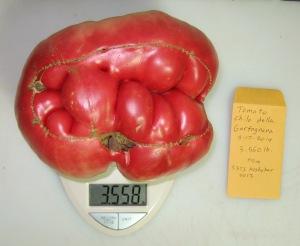 Chilo della Garfagnana (3.554 DT 2014)(3.375 Koshykar 2012) K rev