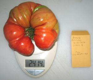 Delicious (2.414 DT 2014)(6.51 Meisner 2011) C rev