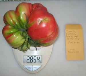 Epstein's Potato Leaf (2.854 DT 2014)(_Johnson 2013) E rev