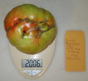 Rhode Island Giant (2.006 DT 2014)(1.924 DT 2012) C rev