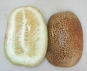 Cucumber, Poona Kheera (0.832 DT 2014) E