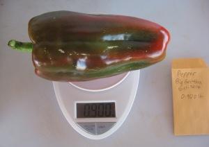 Pepper, Big Bertha (0.900 DT 2014) D