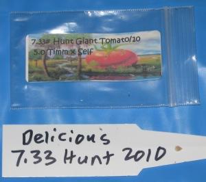 Gaint Tomato Seed Starting 1-29-2015 B