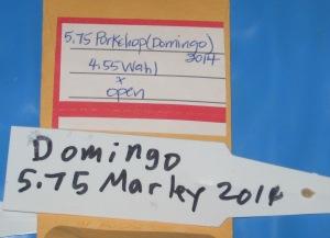 Gaint Tomato Seed Starting 1-29-2015 E