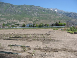 Pleasant Grove Plot, Mt. Timpanogos A